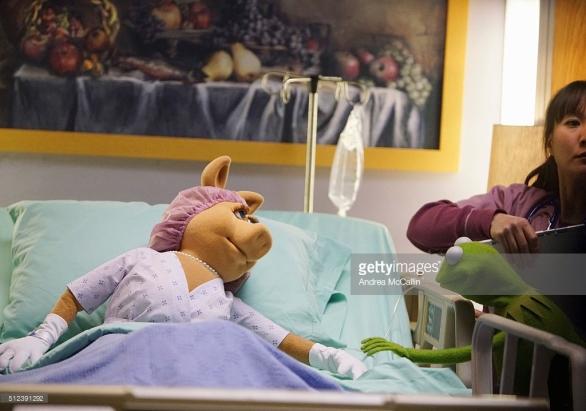 miss piggy surgery